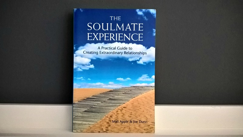 the_soulmate_experience